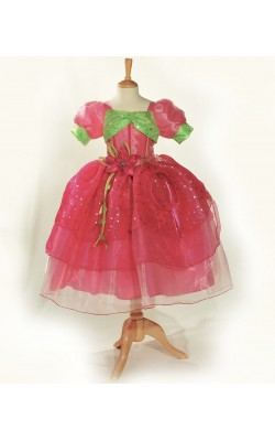 Strawberry Shortcake Princess Dress